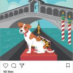 Was ist, wenn Ihr Hund hatte einen Instagram account?