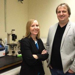 Forscher entwickeln nonopioid Medikament für chronische Schmerzen