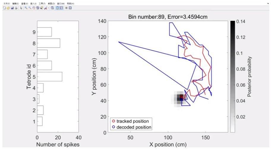 Neurotechnologie bietet Echtzeit-anzeigen von wo die Ratten denken, Sie sind