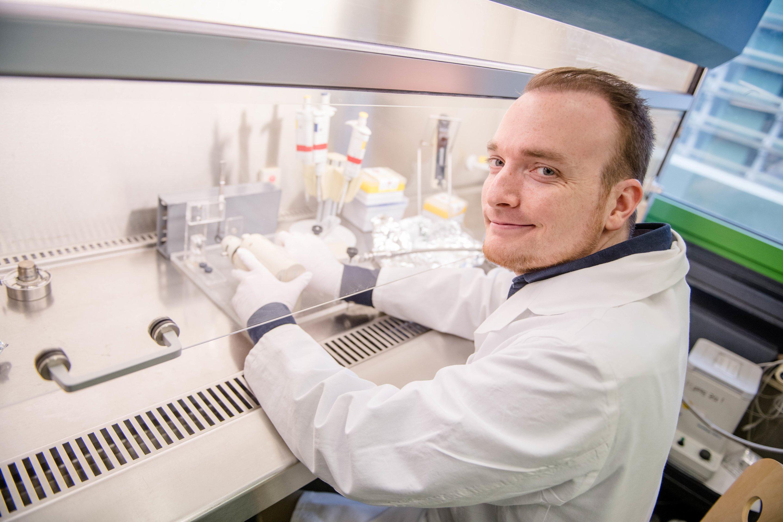 Glutamat-rezeptor beeinflusst die Entwicklung von Gehirn-Zellen nach der Geburt