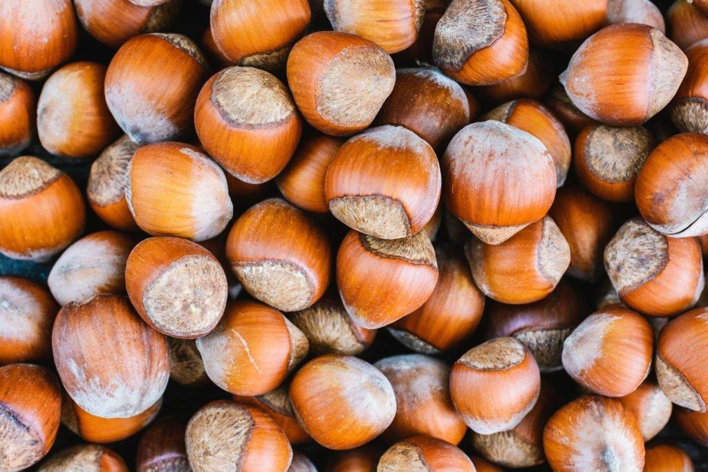 Aktuelle Studie: Haselnüsse statt Nahrungsergänzung