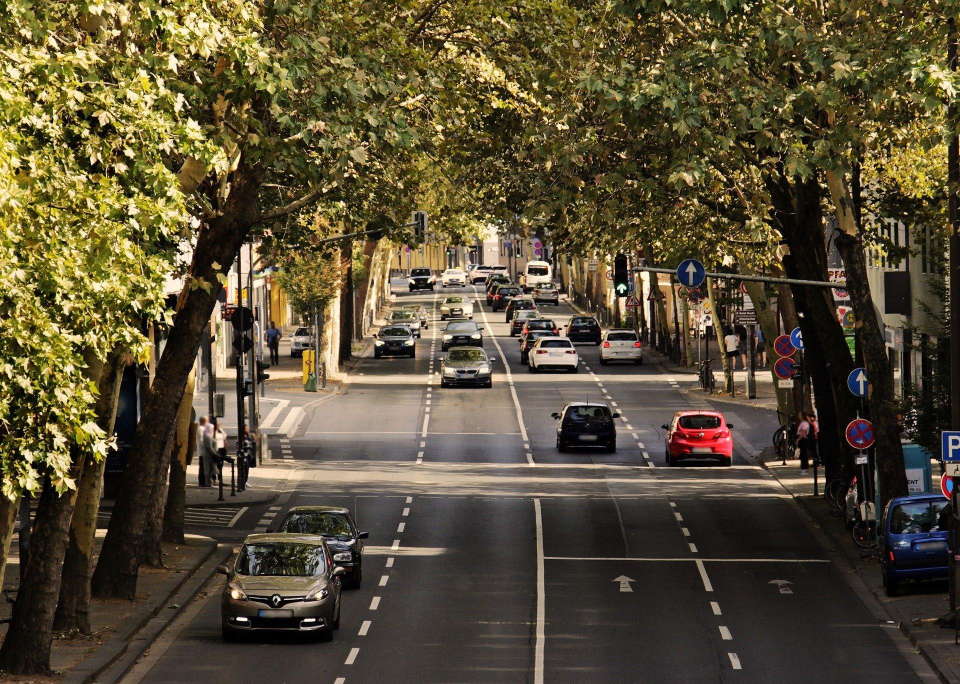 Experte fordert ein starkes, nachhaltiges handeln auf Welt-Straßen sicherer