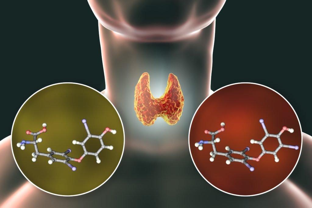 Geheime Dickmacher enttarnt: Diese Chemikalien im Essen stören unseren Stoffwechsel erheblich