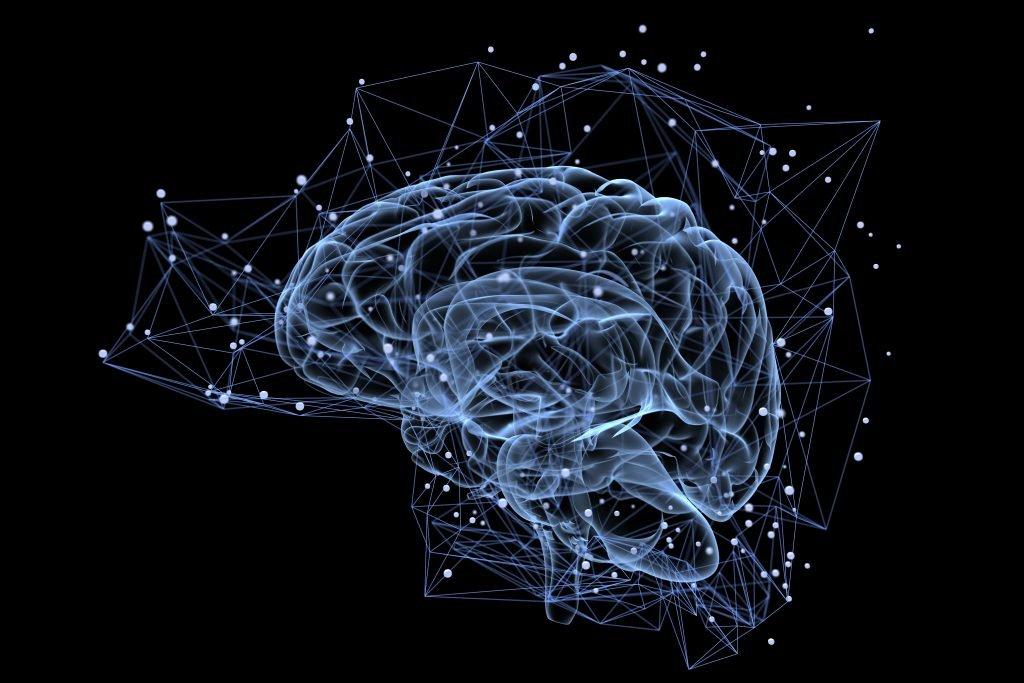 Verlorene Sättigung: Fehlgeleiteter Stoffwechsel im Gehirn führt zu krankhafter Fettleibigkeit