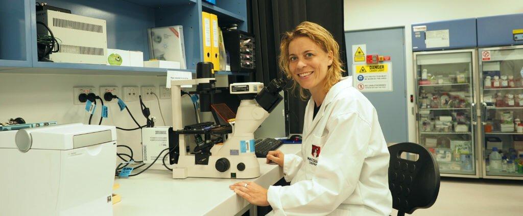 Wachsende Tumoren, die auf Gehirn-ähnliche Gewebe, für bessere Therapien