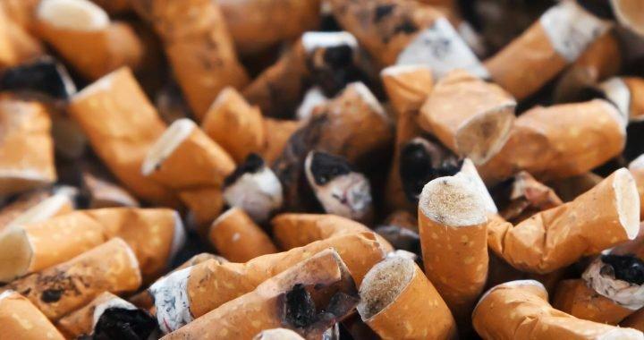 Forscher entdecken, warum environmental cues machen Drogensucht extra schwer zu schlagen