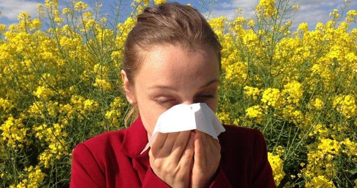 Der beste Weg zur Behandlung von saisonalen Allergien