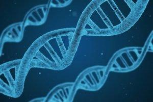 Eine Milliarde Jahre von evolution schlägt einen neuen Ansatz zur Alzheimer-Behandlung