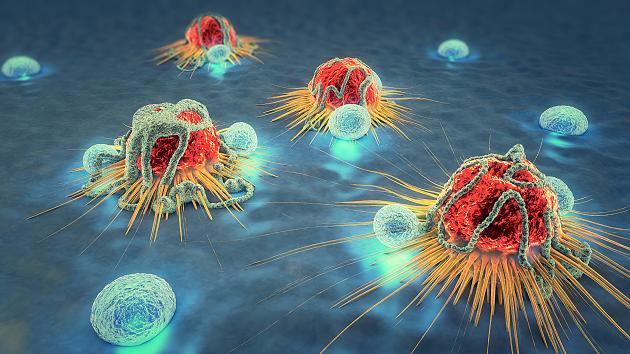 Aufbruch in eine neue Ära der Krebsbekämpfung – Immuntherapie
