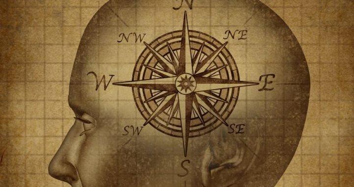 Neue Beweise für eine menschliche magnetischen Sinn, mit der Ihr Gehirn erkennen, das Magnetfeld der Erde