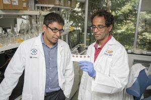 Einfache Blutprobe könnte bestimmen, Frühgeburten-rate in low-Ressource-Ländern