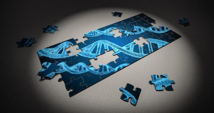 """Studie lüftet den Schleier """"depression Gene' Hypothesen"""