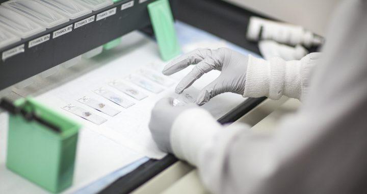 Genetische Untersuchungen bei Frauen mit Brustkrebs diagnostiziert, sinkt die Kosten im Gesundheitswesen Bundesweit
