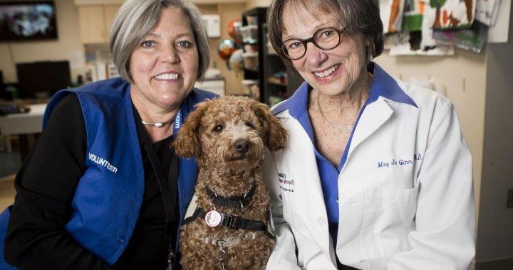 Studie untersucht Auswirkungen von Therapie, die Tiere auf Kinder mit Krebs