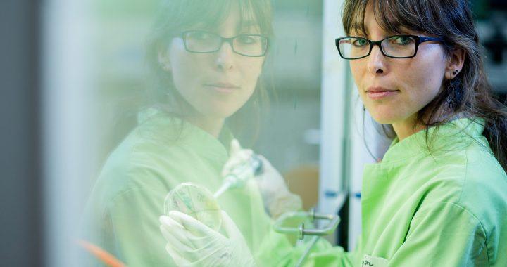 Evolution und ökologie inspirieren die klinische Forschung in Infektionen und antimikrobielle Resistenz