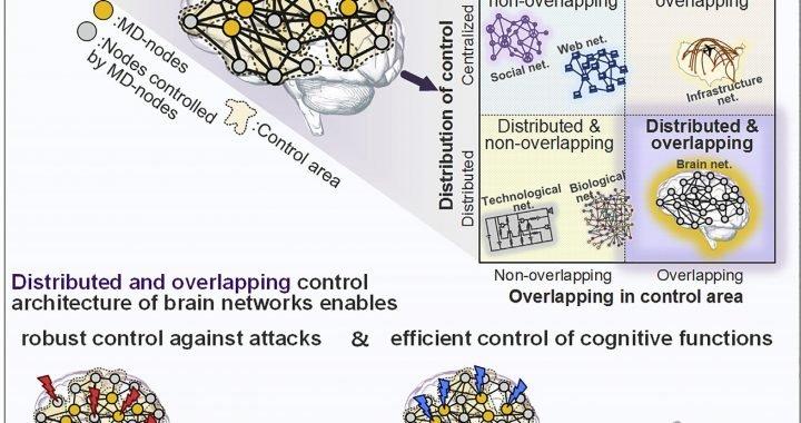 Team enthüllt die verborgene Architektur von neuronalen Netzen