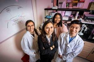 Studie: Medikamente umprogrammieren Gene in Brusttumoren zu verhindern, dass die endokrine Resistenz