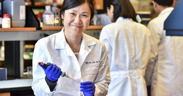 Forscher Studien unheilbaren Blutkrankheit in der Regel bei Kindern diagnostiziert