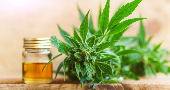 Urteil: Cannabistherapie muss alternativlos sein