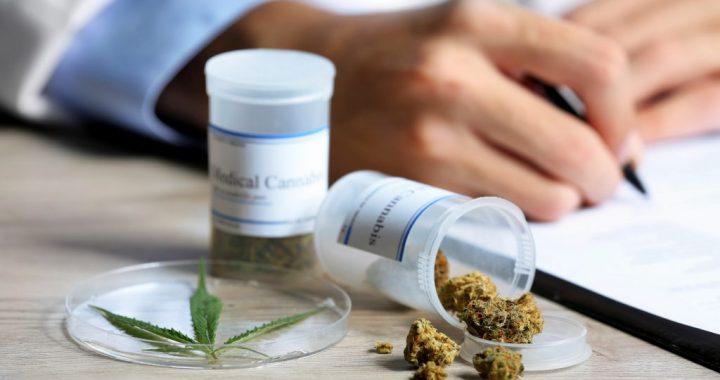 Cannabis als neue Geheimwaffe gegen Übergewicht