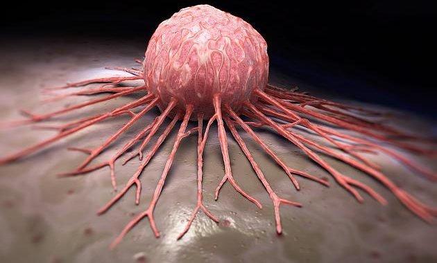 An Leipziger Uni-Klinik getestet: Neue Gen-Therapie schlägt bei Krebspatient an
