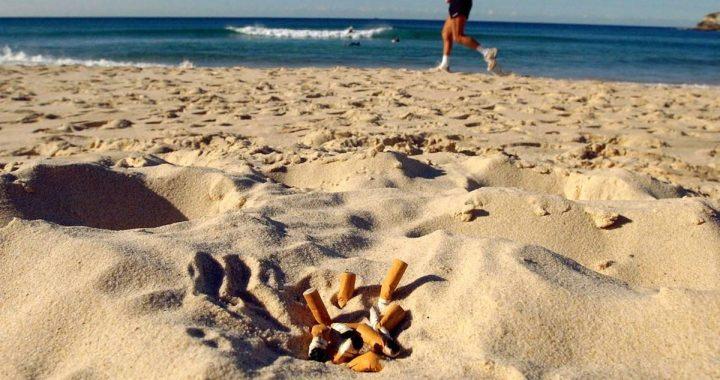 Nabu fordert generelles Rauchverbot an Stränden – sind Sie auch dafür?