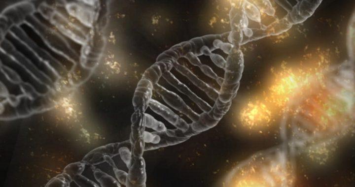 Forscher identifiziert Unterschiede in Genen, die Auswirkungen der Antwort auf cryptococcus-Infektion