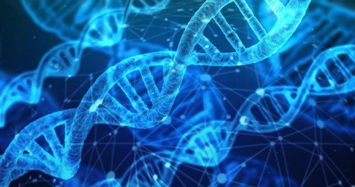 Die Erkundung der genetischen 'dunkle Materie' Forscher erlangen neue Einblicke in den Autismus und Schlaganfall