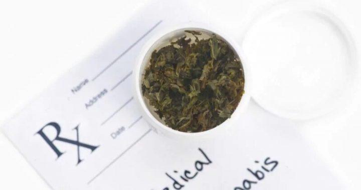 Verwendung von Marihuana Häufig bei Erwachsenen mit Erkrankungen