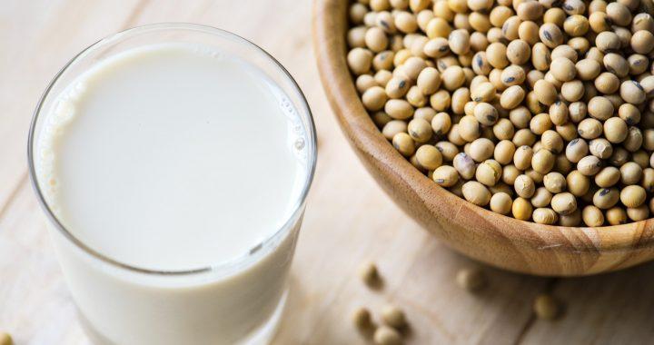 Weint über pflanzliche Milch: weder die Wissenschaft noch die Geschichte begünstigt eine Milch-Monopol