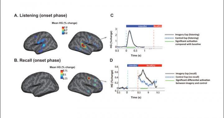 Gerade Musik-Bewegung durch das Gehirn