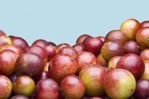 Camu-Camu Ist die Neueste Buzzy Superfood poppen Überall—Heres, Was eine Ernährungsberaterin Denkt