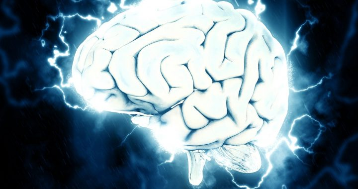 Multifunktionale kleine Gehirn: Großhirnrinde nicht der einzige Bereich, mit Wahrnehmungs-Fähigkeiten