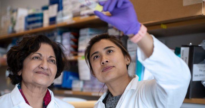 Mapping-der Weg zu Gesundheit des Darms in der HIV-und SIV-Infektionen