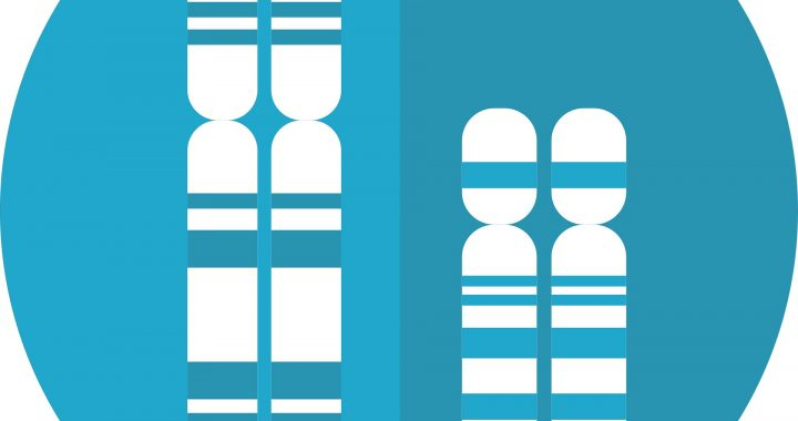 Roman Einblick in Chromosoms 21 und seine Auswirkungen auf Down-Syndrom