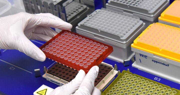 Einige genetische Sequenzierung fehl, um die Analyse großer DNA-Segmente