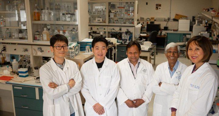 Botanische Medikament wird angezeigt, um zu helfen Patienten mit Kopf-Hals-Karzinomen