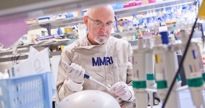 Droge überwindet Chemotherapie-Resistenz bei Eierstockkrebs