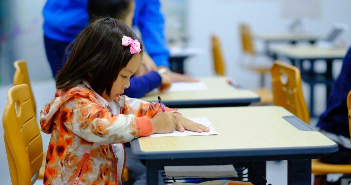 Studie untersucht die Auswirkungen von Zweisprachigkeit auf die Entwicklung des Gehirns