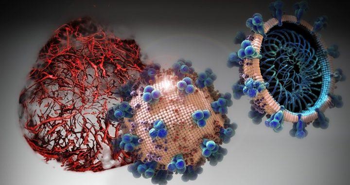 Trial Medikament kann erheblich block frühen Stadien der COVID-19 in menschlichem Gewebe entwickelt