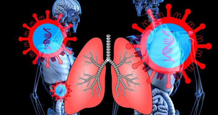 Herz-Patienten vermieden ERs als coronavirus Treffer, der UNS sagt Studie