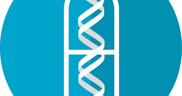 Internationale Studie Ansätze, neue therapeutische Strategien für Lungenkrebs