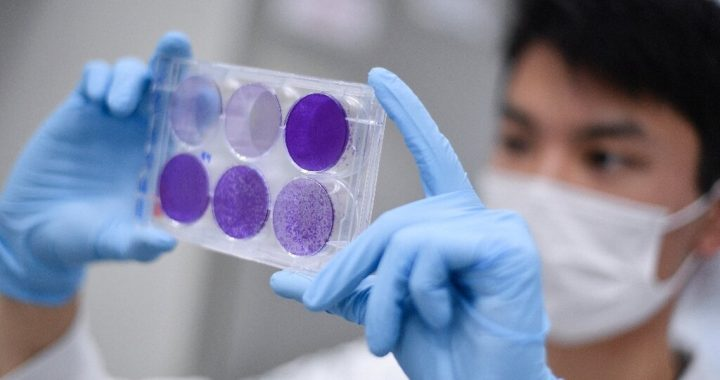 Full-Corona-Virus-Impfstoff unwahrscheinlich, dass bis zum nächsten Jahr: Experte