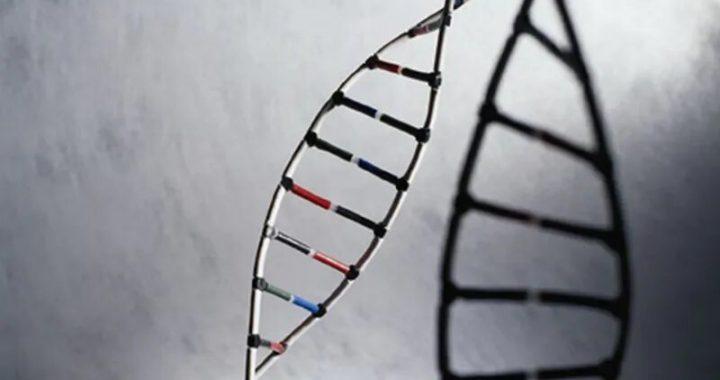 Wissenschaftler näher an mapping gesamte menschliche Genom