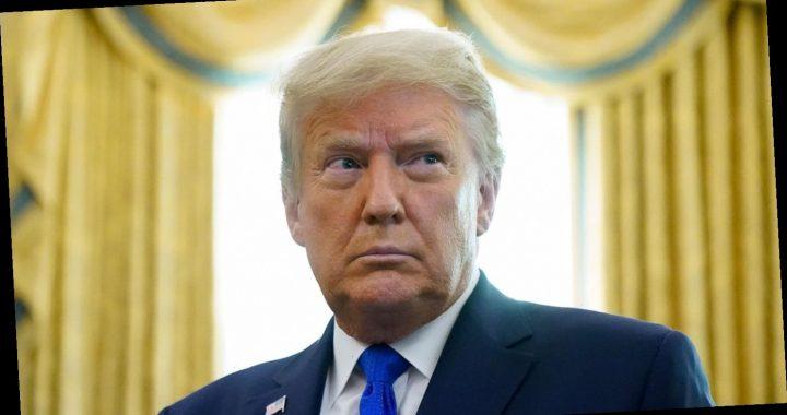 """Trump hält Zahl der Corona-Toten in den USA für """"übertrieben"""""""