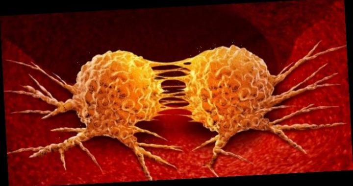 Wie sich Krebs ausbreitet – Studie bringt neue Erkenntnisse – Heilpraxis