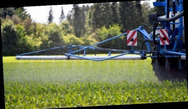 Bayer unterliegt erneut bei Glyphosat-Berufungsverfahren in USA